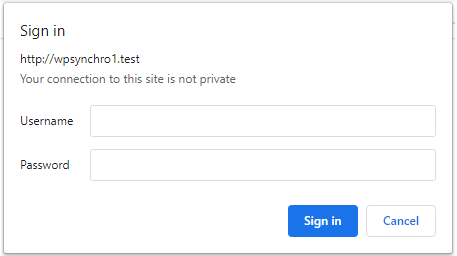 Basic Authentication in Chrome